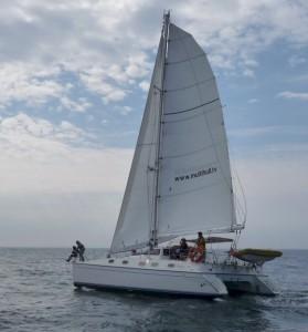 mago full sail